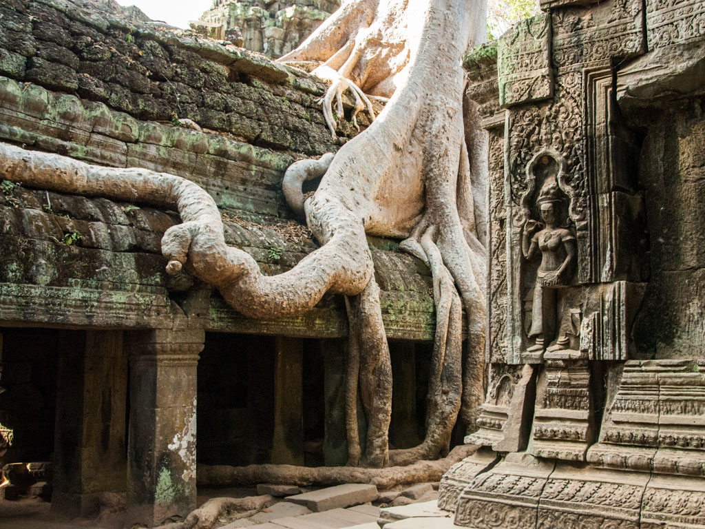 Siem Reap & Phnom Penh Cambodia 5 Days Package tour
