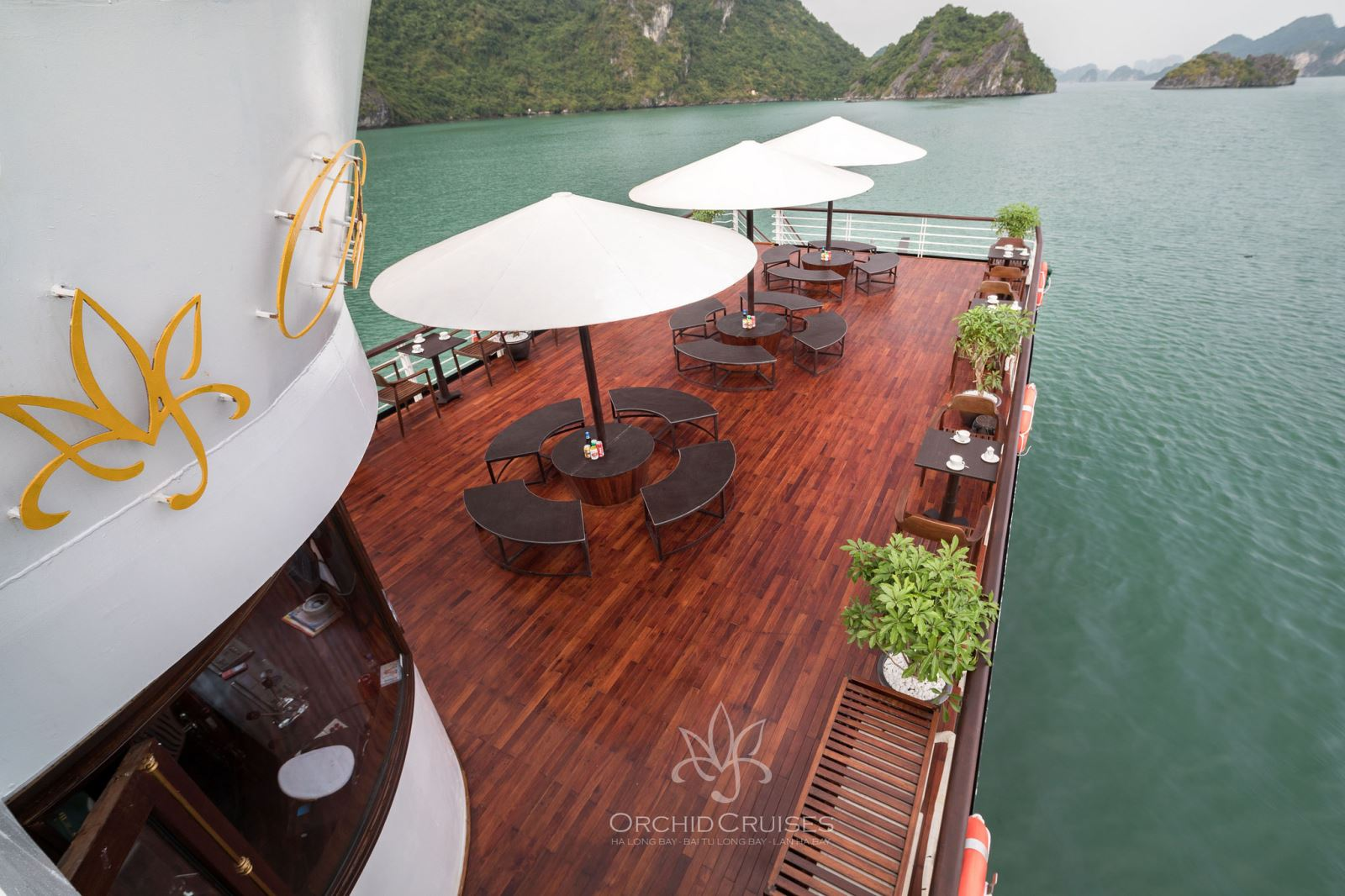 Orchid Day Cruise visit Halong - Lan Ha - Cat Ba
