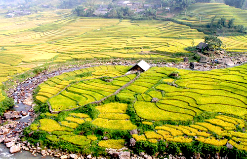 Muong hoa valley.jpg