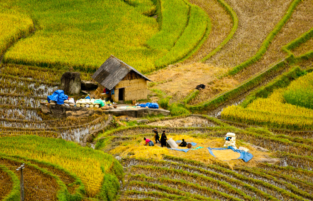 Sapa Village Trekking in 2 Days