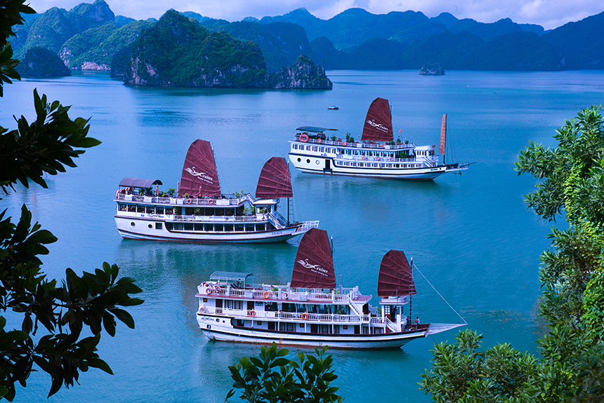 Halong swan cruise-overview.jpg