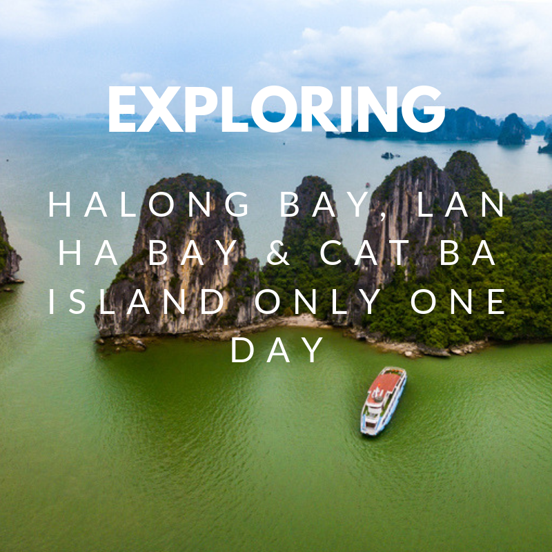 Explore pristine natural beauty Lan Ha bay, Halong bay & Cat Ba island only one day