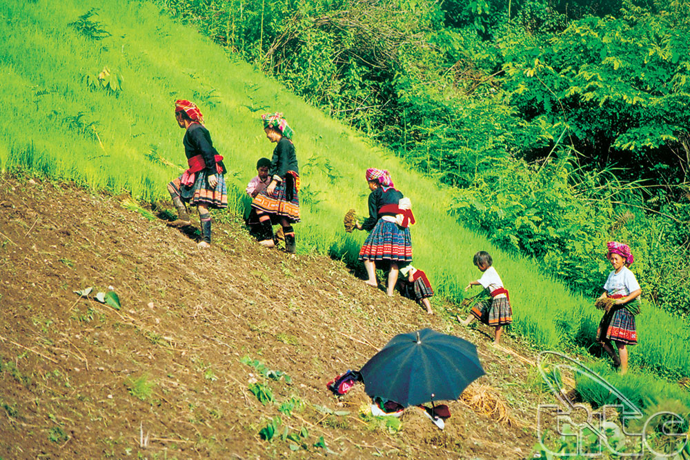 Lai Chau tourism-culture week to be opened