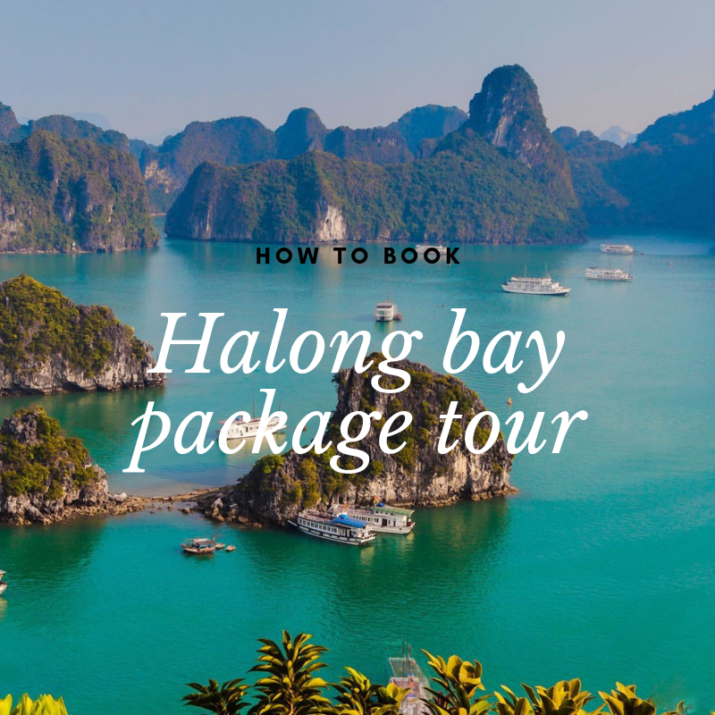 Halong package tours from Hanoi 2019: make a best choice