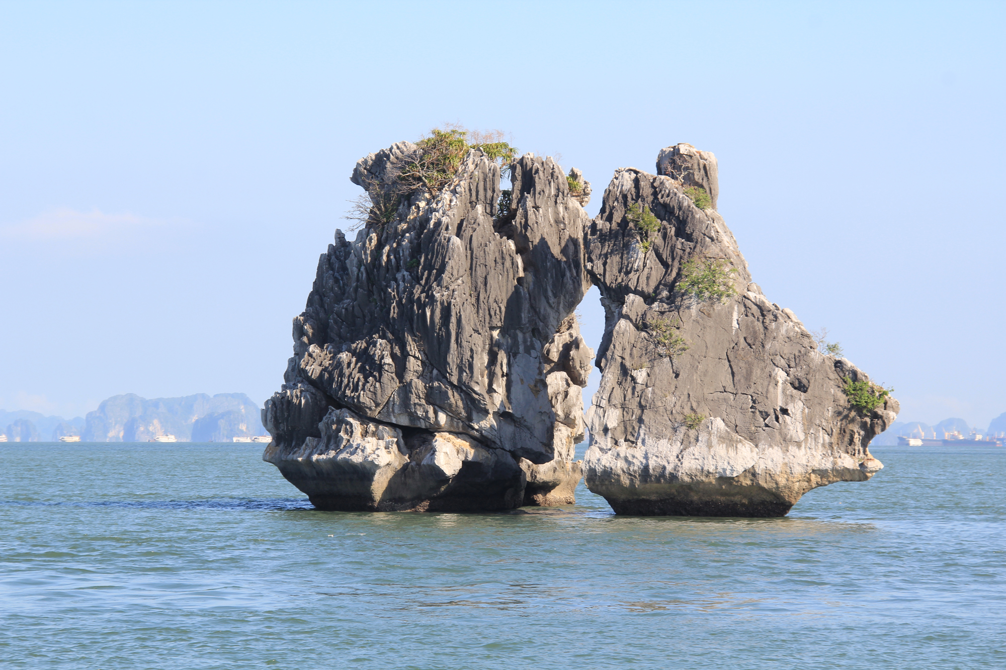 Halong Kissing chicken rock