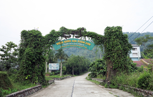 Xuan Son National Park - A destination of ecological interest