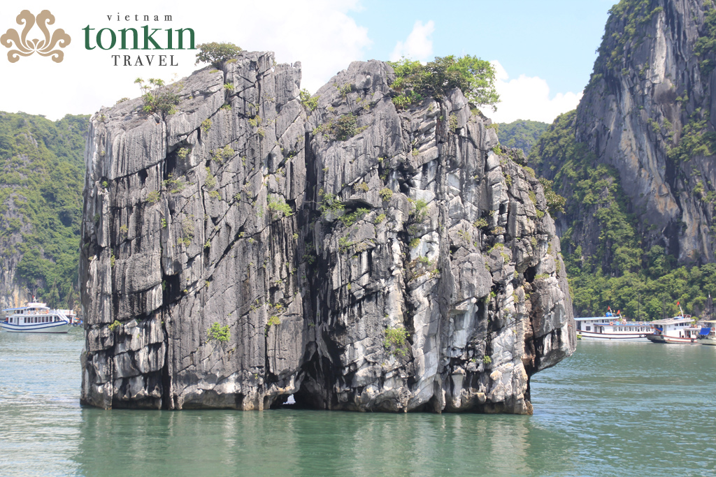 Cambodia Mekong Cruises & Vietnam 20 Days Package tour