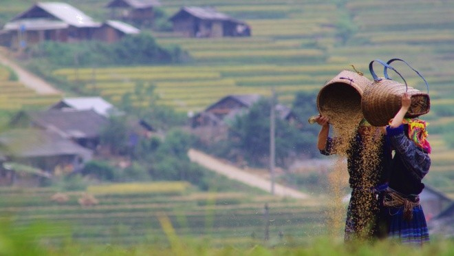 Mu Cang Chai Motorbike tour 3 days 2 nights