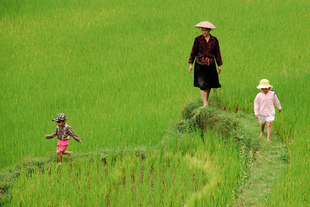 Northern Vietnam Off the beaten track 6 days 5 nights
