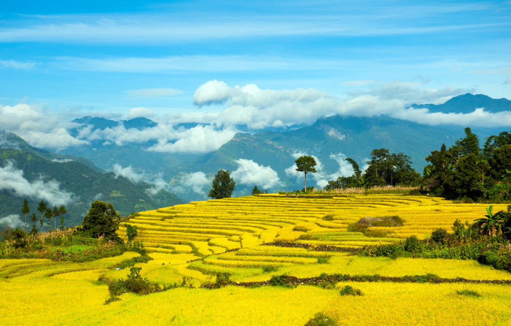 Sapa - Halong - Catba package tours in 6 days