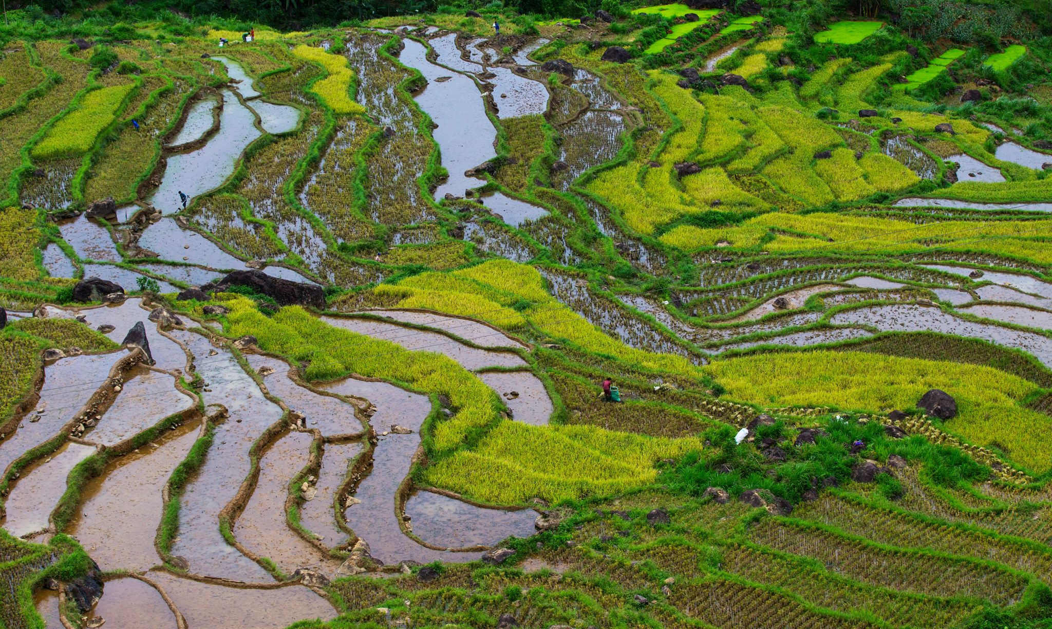 Mai Chau Pu Luong Trekking tour in 2 Days